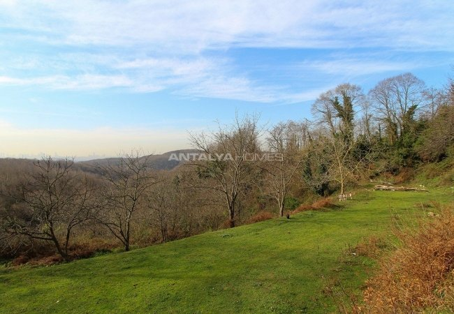1750 M² Land for Sale with Fruit Garden in Turkey Istanbul