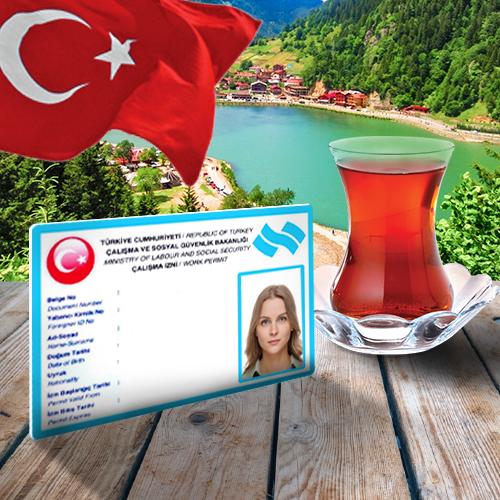бирюзовая карта | Istanbul Homes